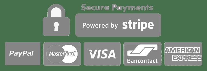 Paiements Sécurisés avec PayPal et Stripe